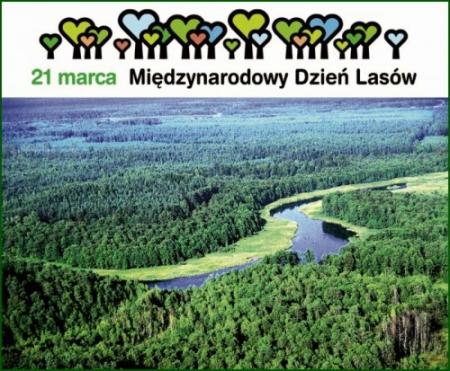 21 marca obchodzony jest Międzynarodowy Dzień Lasów